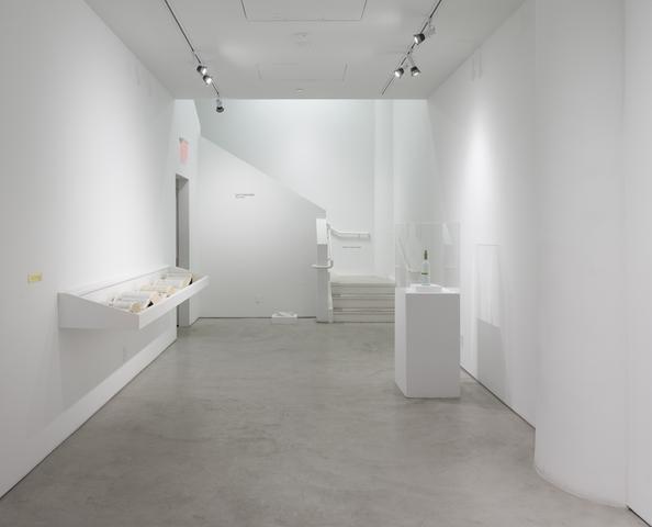 Luis Camnitzer: <i>Short Stories</i>, installation view, Alexander Gray Associates (2017)