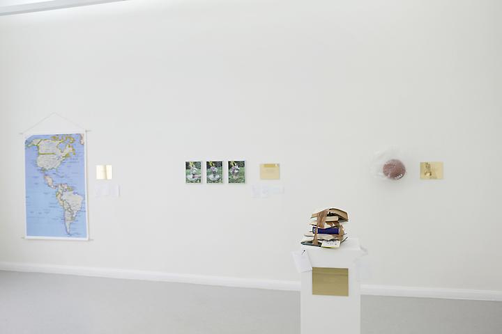 Luis Camnitzer, Installation view, Aanant & Zoo (2012)