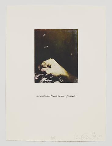 His Breath Came Through the Roots of His Hair (1983-84) Photo etching in 35 parts; 29.53h x 21.65w in (75.01h x 54.99w cm) Edition of 15 with 1 AP