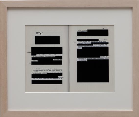 Edit (Why) (2012) Digital C-print 10.37h x 12.87w in (26.4h x 32.7w cm)