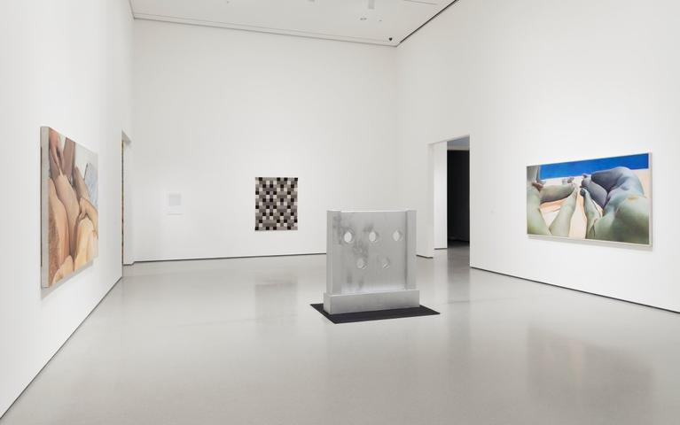 Installation view, <i>The Heart is not a Metaphor</i>, Museum of Modern Art, NY (2014–15)