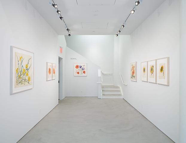 Vera Paints a Summer Bouquet Installation view, Alexander Gray Associates (2014)