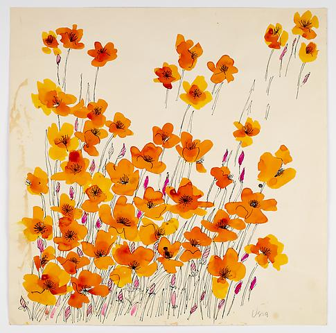 "Island Poppies, from the ""Florals"" series (c.1973) Watercolor on paper 20h x 20w in (50.8h x 50.8w cm)"
