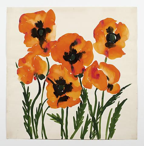 "Oriental Poppies, from the ""Florals"" series (c.1973) Watercolor on paper 24h x 24w in (61h x 61w cm)"