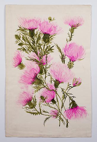 "Thistle, from the ""Florals"" series (c.1973) Watercolor on paper 30h x 19.4w in (76.2h x 49.3w cm)"