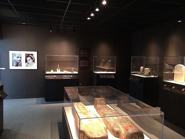 Bass Museum of Art  Installation view