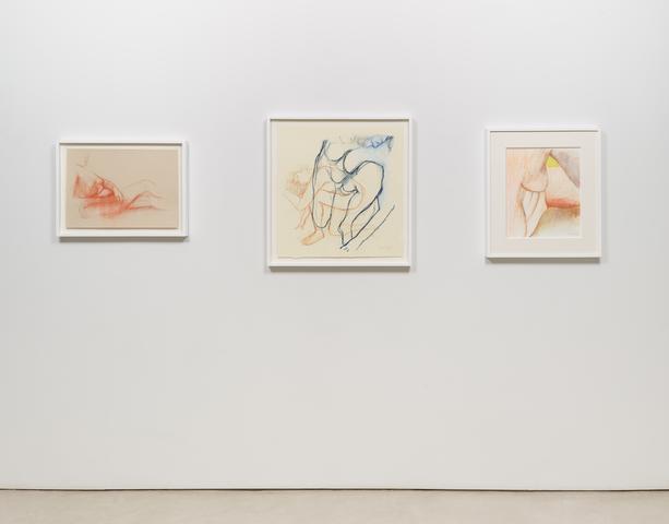 <i>Joan Semmel: New Work</i>, installation view, Alexander Gray Associates (2016)