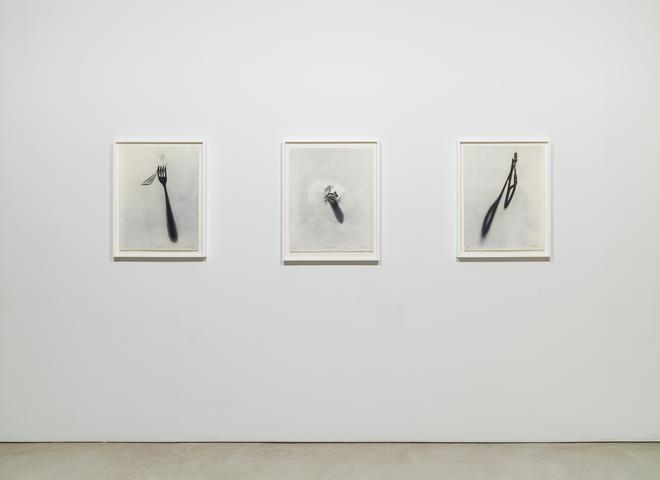 Regina Silveira, installation view, Alexander Gray Associates (2016)
