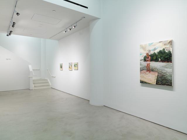 Hugh Steers: Day Light, Installation View, Alexander Gray Associates (2015)