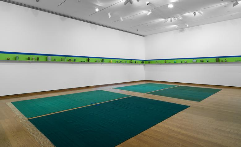 Evergreen (2015) Installation view Everson Museum of Art, Syracuse, NY