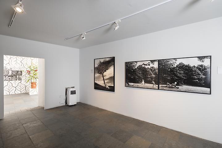 Lorraine O'Grady  International Biennial of Contemporary Art of Cartagena de Indias, 2014 Installation view