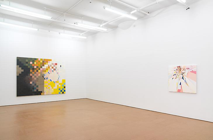 Jeremy Gilbert-Rolfe Installation view, Alexander Gray Associates (2011)