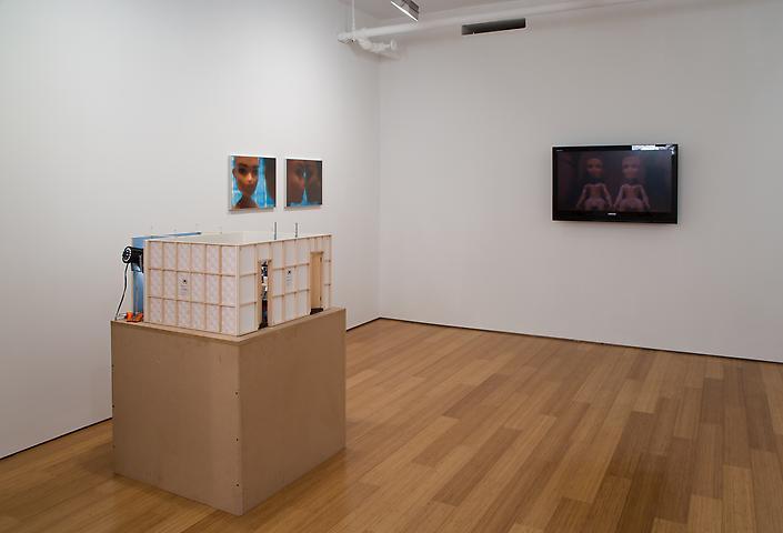 Bruce Yonemoto Selects: Bryan Jackson (2007) Installation view Alexander Gray Associates