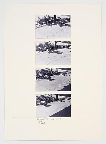 Shadows of Al Loz (1983) Photographs on paperboard 33.07h x 23.43w in (84h x 59.51w cm)