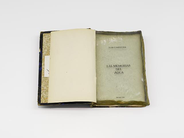 Las Memorias del Agua [The Memoirs of Water] (1998) Book and polyester 3.4h x 24.2w x 18d in (8.64h x 61.47w x 45.72d cm)