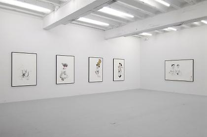 ZOË CHARLTON Family (installation view at Conner Contemporary Art, November 2008)