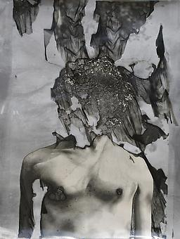 JASON EDWARD TUCKER Wither I  2013, silver gelatin print with mordançage process, 24 x 20 inches, unique