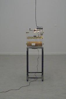 Koen Vanmechelen Incubator Breeding Machine 2002/2009, Transparent incubator with audio
