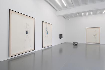 ZOË CHARLTON Paladins and Tourists installation view, 2011