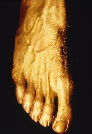 Gold Foot With Veins