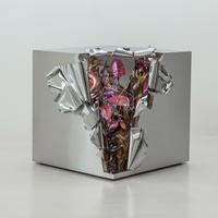 Secret Cube, 2013, MP2696