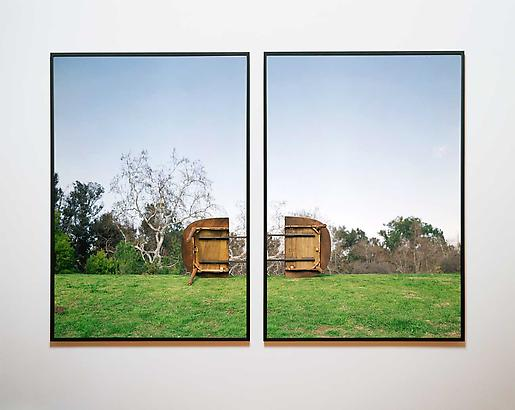 Joey Lehman Morris Exuviation Consort, 2008 Two Chromogenic (from Lightjet) Print On Dibond And Under Acrylic, Laquer On Maple Frame 70 x 48 inches (each), 70 x 100 inches (together with two inches apart) Edition of 3