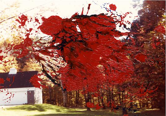 <em>Fall 1981</em>, 2011 22.75 x 32.75 in Chromogenic print