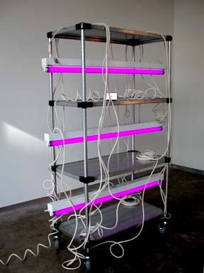 The Mystery of Things 2001 Black light bulbs, aluminum cart, electrical hardware 69 x 48 x 19 inches