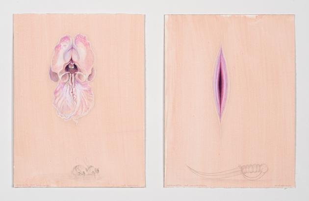 Soft Approach, Hard Approach, 2015 Diptych: Acrylic, colored pencil, ink & gouache on paper in two parts 12 x 9 inches, each sheet SGI3142