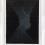 Untitled, 2014 Ink on mylar 56 1/2 x 42 inches SGI2868