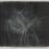 Untitled, 2014 Ink on mylar 15 1/2 x 20 inches SGI2870
