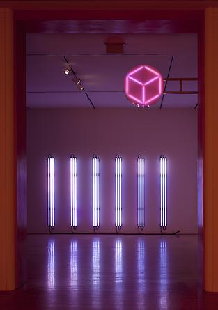 Installation: San Jose Museum of Art, San Jose, CA 2010