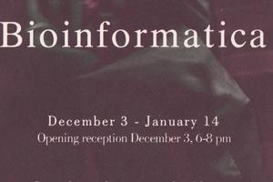 the x-art foundation: bioinformatica