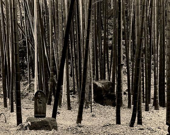 Japan, 2005