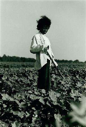 Tallahatchie County, MS, 1964