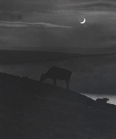 Yorkshire, 1944