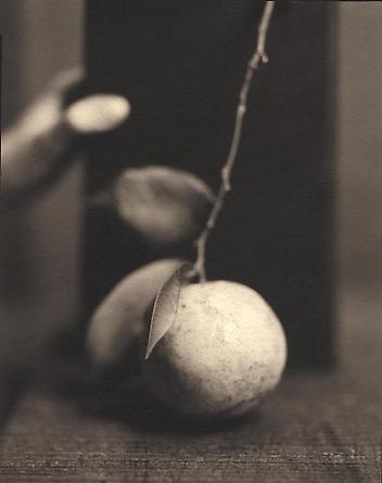 Orange, 1999