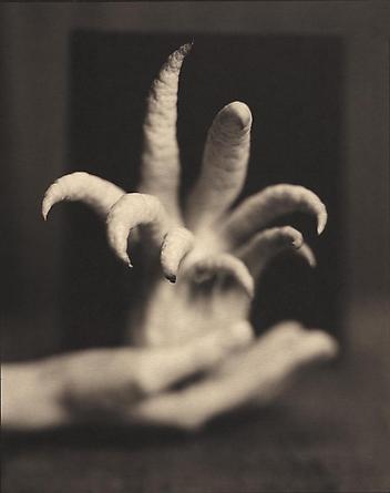 Buddha's Hand, 1999