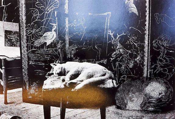 Cat and sleeping puppy in the atelier, 2011 Unique hand-painted chromogenic print with mixed media, 26 5/8 x 39 1/8 inches (67.6 x 99.4 cm)