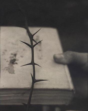 Locust, 1999