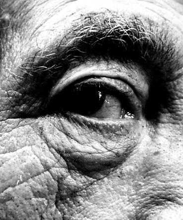 Giacometti, 1963