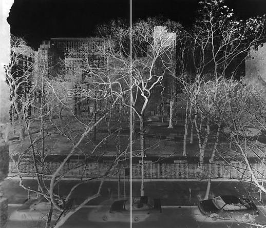 Vera Lutter Gramercy Park, I: Spring 1995