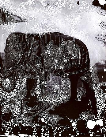 The elephant of deliberate forgetfulness, 2011
