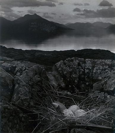 Gull's Nest, Late on Midsummer Night, Isle of Skye, November 1947