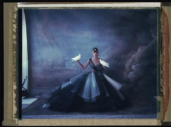 L'arche de Noé VIII, Dior - Philip Treacy, Haute Couture Summer 2012, 2012