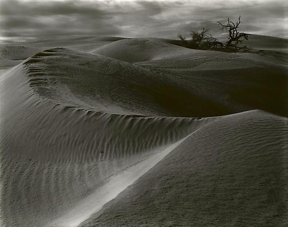 Dunes, 1938