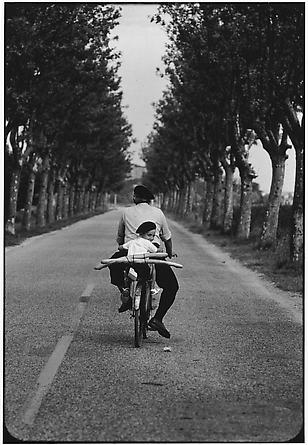 Provence, France, 1955