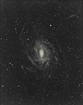 Galaxy in Pavo, NGC 6744