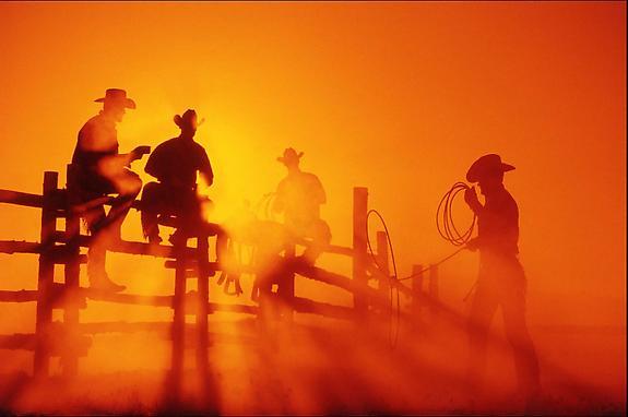 Cowboy #231, 2001