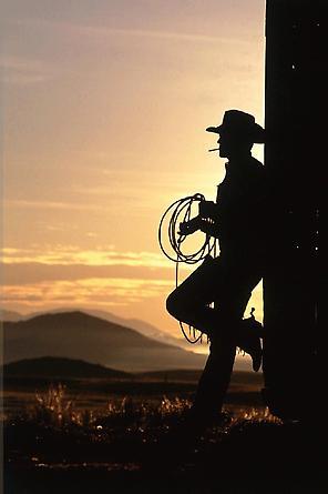 Cowboy #272, 1999